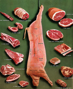 pork 245x300 Noshin: Israeli Jew Stirs Up Controversy with Pork Cookbook