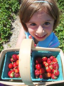 chloe berries 225x300 Minnesota Mamaleh: Tradition!