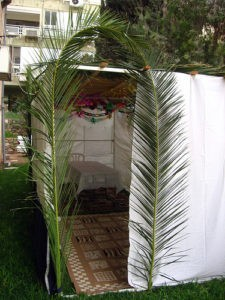 View of a sukkah overhung by a branch